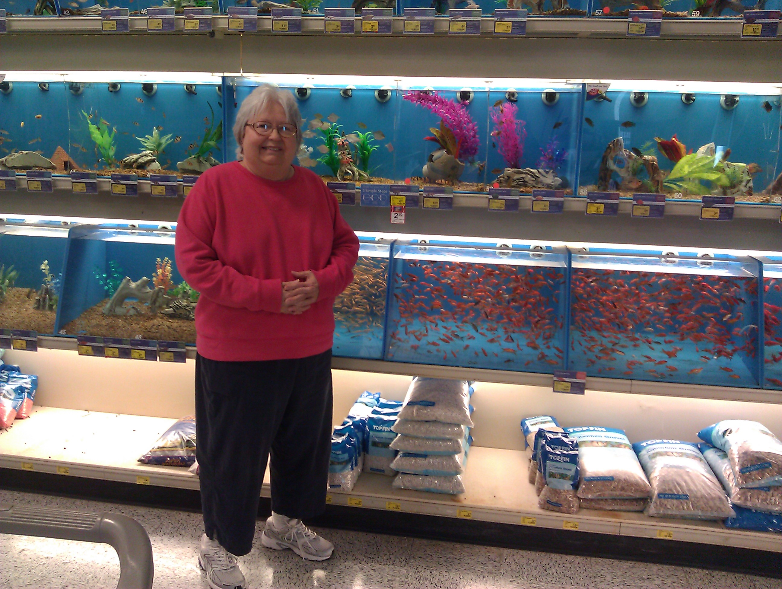 Pat of butter 2013 february for How much are fish at petsmart